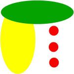 wth_logo